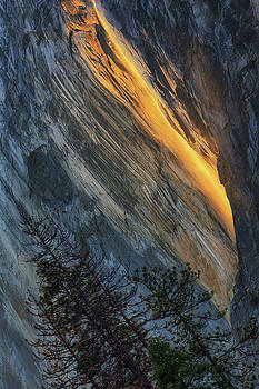 Firefall Abstract by Vincent James