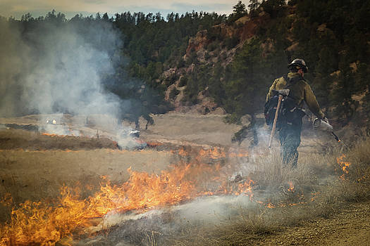 Firefighter ignites the Pleasant Valley Prescribed Fire by Bill Gabbert