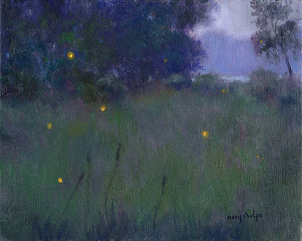 Fireflies in a meadow by Mary Phelps