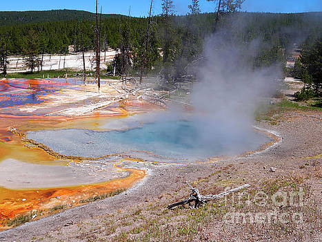 Firehole Spring in Yellowstone National Park by Louise Heusinkveld