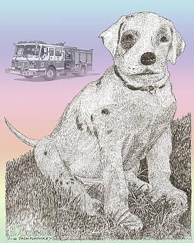 Jack Pumphrey - Firehouse Dalmatian Puppy