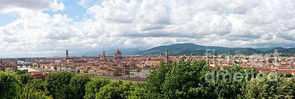 Firenze by Leonardo Fanini