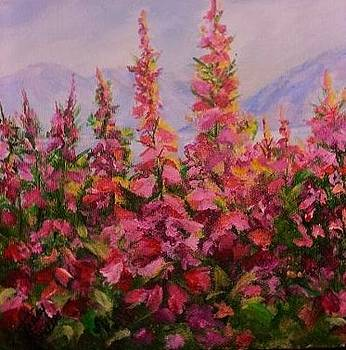Fireweed  Frenzy  by Terry  Phillips