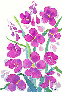 Fireweed Study by Teresa Ascone