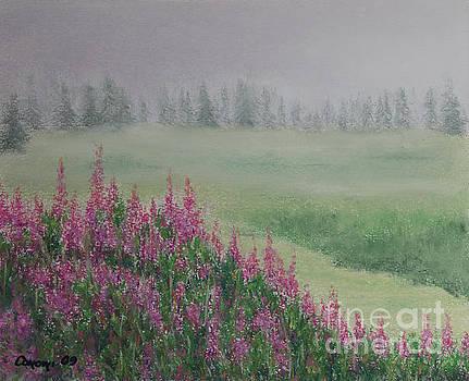 Stanza Widen - Fireweeds Still In The Mist