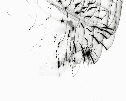Michelle Calkins - Firework Abstract 5
