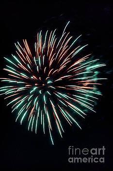 Fireworks 1397V by Doug Berry