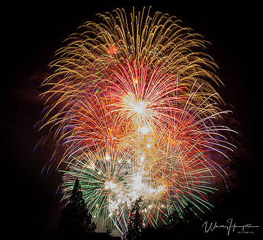 Fireworks - 1631,S by Wally Hampton