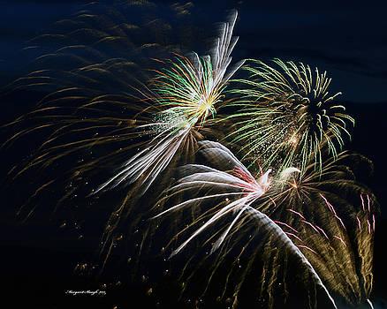 Fireworks 2015 by Margaret  Slaugh