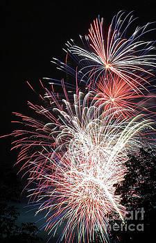 Gary Gingrich Galleries - Fireworks-6483