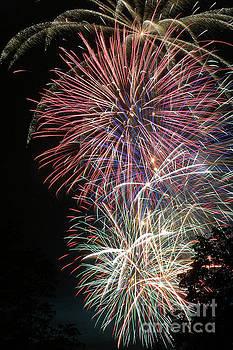 Gary Gingrich Galleries - Fireworks-6486