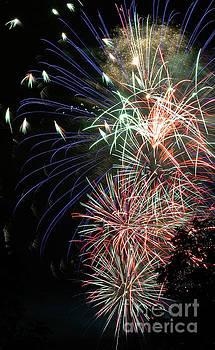 Gary Gingrich Galleries - Fireworks-6488
