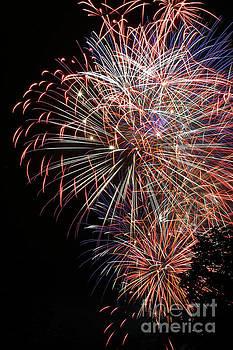 Gary Gingrich Galleries - Fireworks-6489