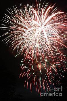 Gary Gingrich Galleries - Fireworks-6491