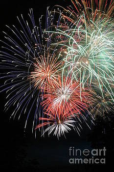 Gary Gingrich Galleries - Fireworks-6492