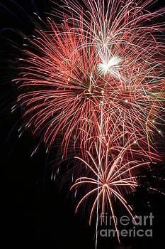 Gary Gingrich Galleries - Fireworks-6496