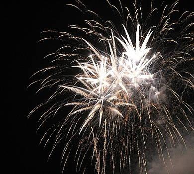 Fireworks by Carolyn Ricks