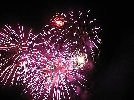Fireworks by Cheri Carman
