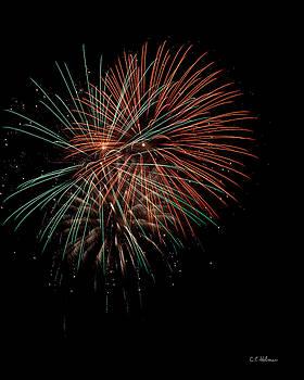 Christopher Holmes - Fireworks