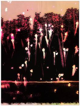 Fireworks by Cooky Goldblatt