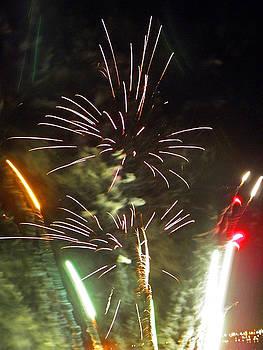 Elizabeth Hoskinson - Fireworks