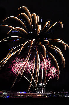 Fireworks Festivities by Andrew Soundarajan