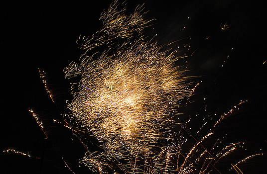 Fireworks Fiery Hail by Scott Lyons