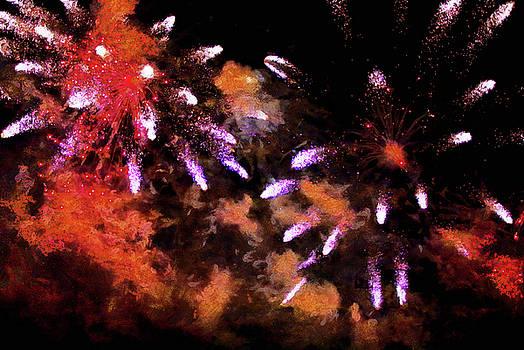 Fireworks by Gavin Bates