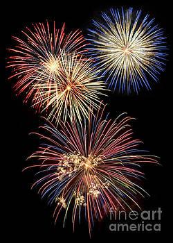 Fireworks by Leah McPhail