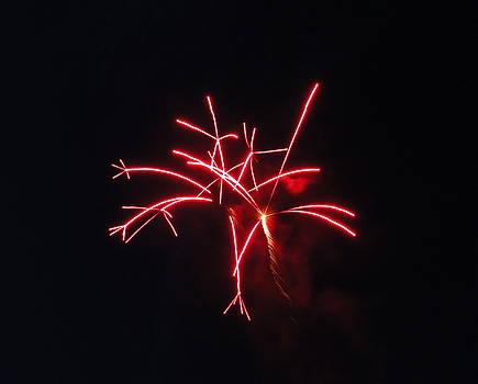 Fireworks Twenty Eleven III by Daniel Henning