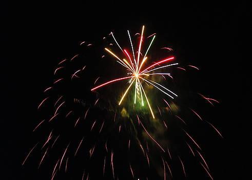 Fireworks Twenty Eleven XII by Daniel Henning