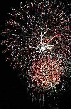 Gary Gingrich Galleries - Fireworks6510