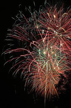 Gary Gingrich Galleries - Fireworks6511