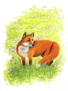 Fiery Fox by Emily MacDonald