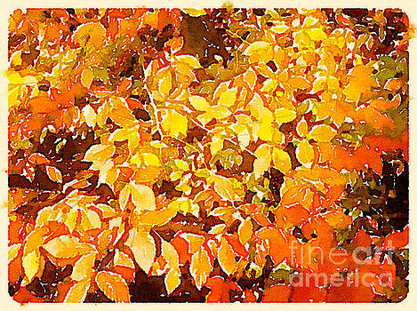 Firey Leaves by Janet Dodrill
