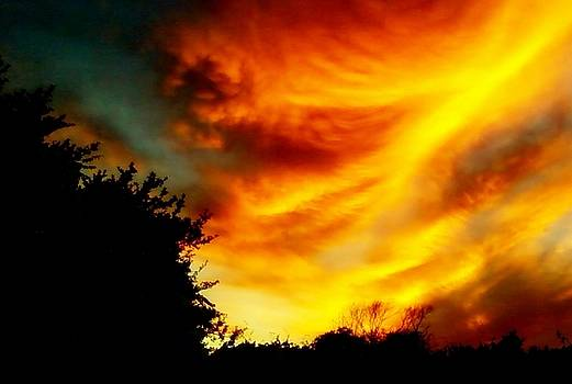 Cindy New - Firey Sky