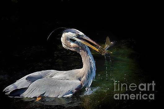 First Catch of the Day by Pamela Blizzard