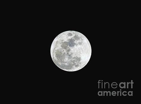 First Full Moon of 2016 by Eddie Yerkish
