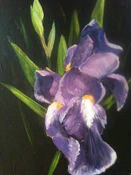 First Iris of the Spring by Joseph Baker