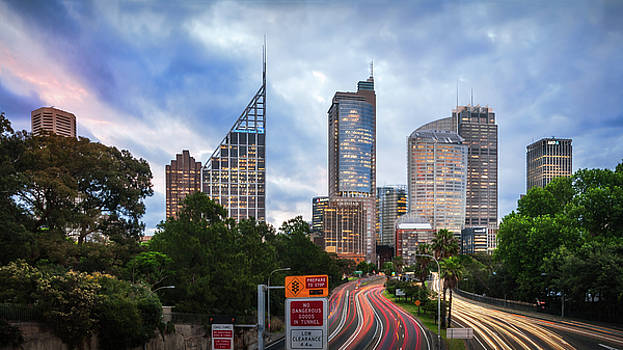 First lights in the City of Sydney at dusk  by Daniela Constantinescu