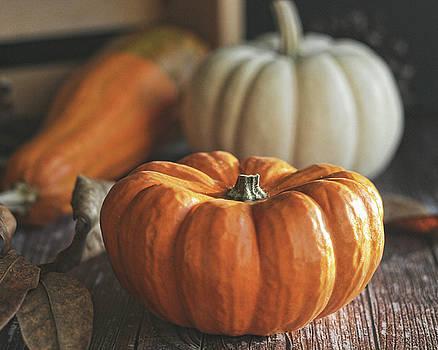 First of Fall by Terri Tiffany