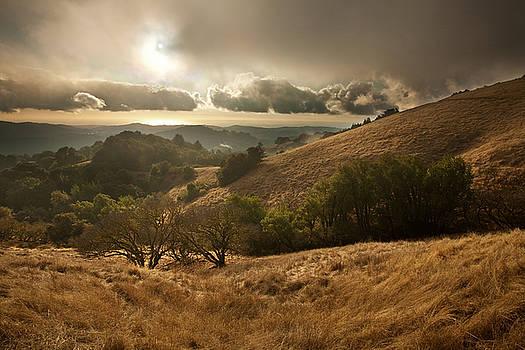First Rain by Matt Tilghman