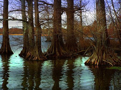 First Rays at Reelfoot by Julie Dant