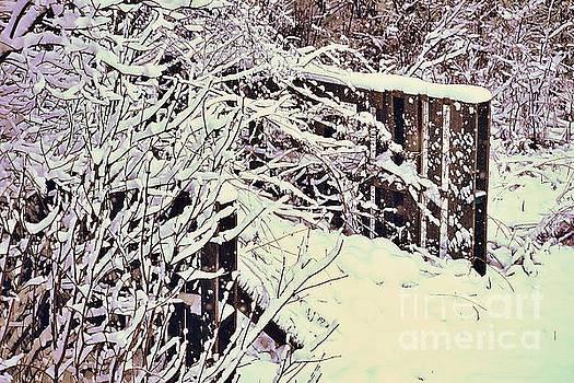 First Snow by Becky Kurth