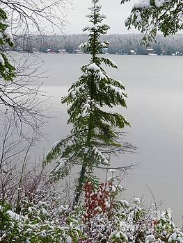 First snow by Brenda Ketch