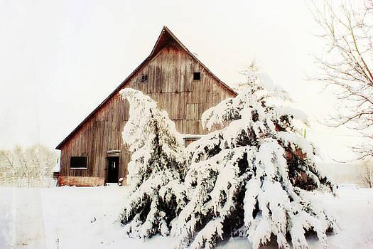 First Snowfall by Julie Hamilton