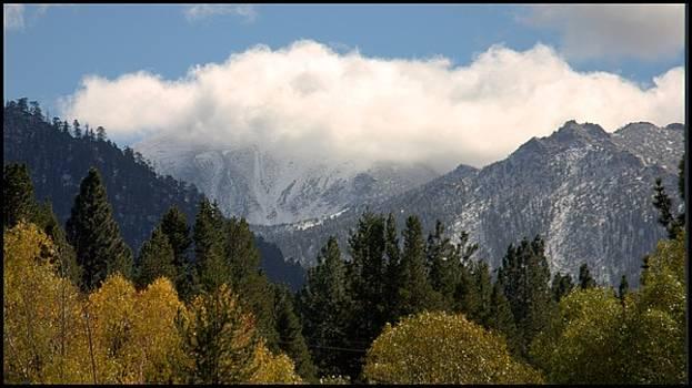 First snow in Tahoe by Brad Scott
