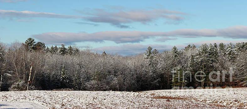 Sandra Huston - First Snow Panorama