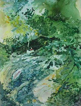 Fish Ahead by Elizabeth Carr