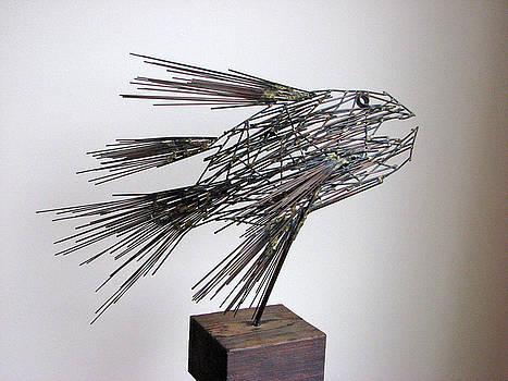 Fish by Buzz Leighton